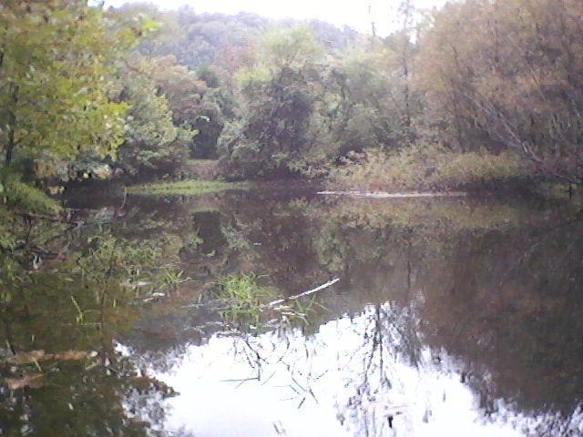 0 Cub Creek Rd