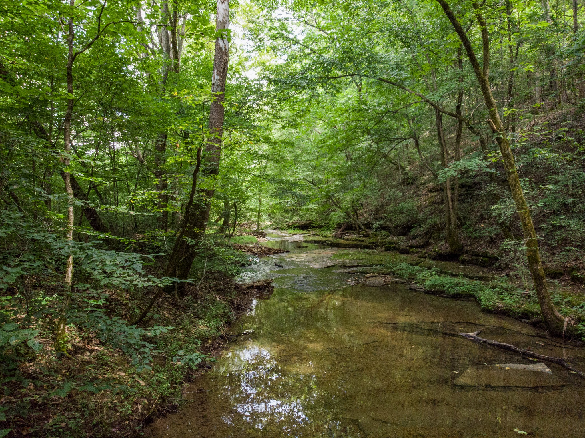 0 Little Pond Creek Rd